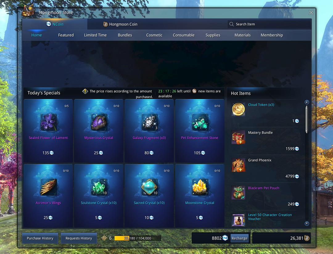 blade and soul ncoins